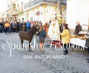 Spanish Festivals: San Anton Abad
