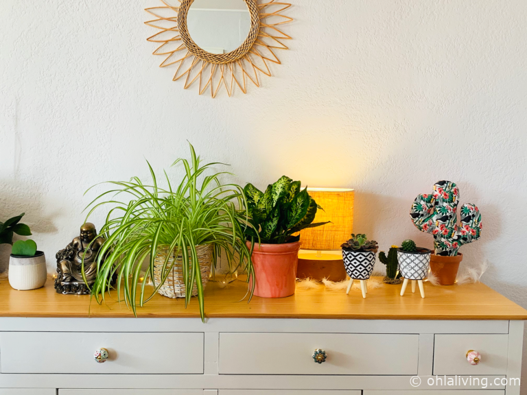 30 Quirky Plant Pots For Succulents And Indoor Plants