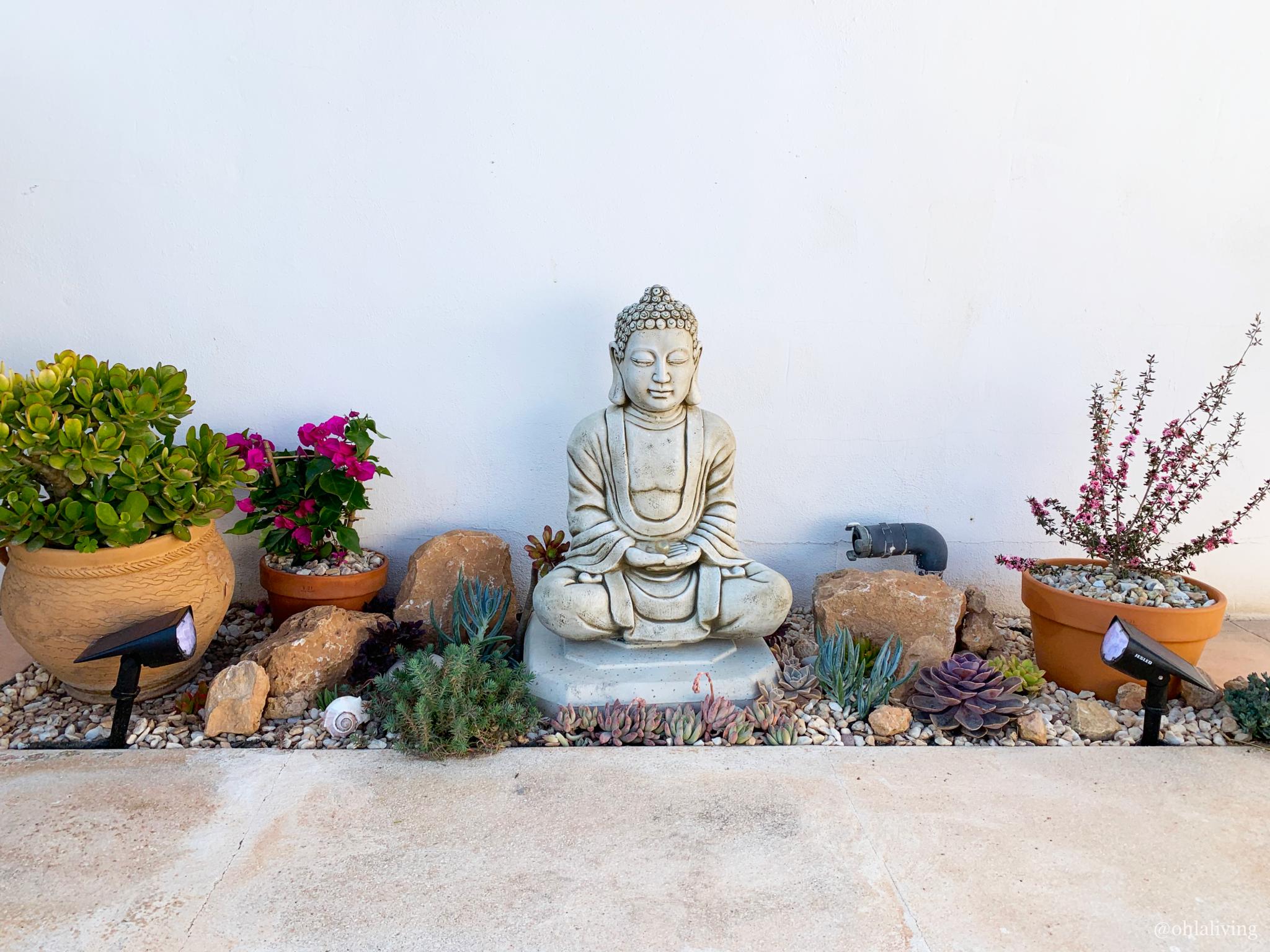 DIY Succulent Zen Garden