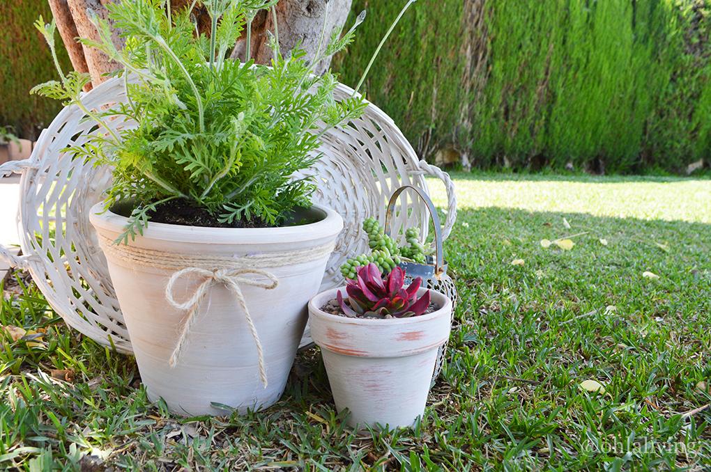 DIY aged terracotta plant pots