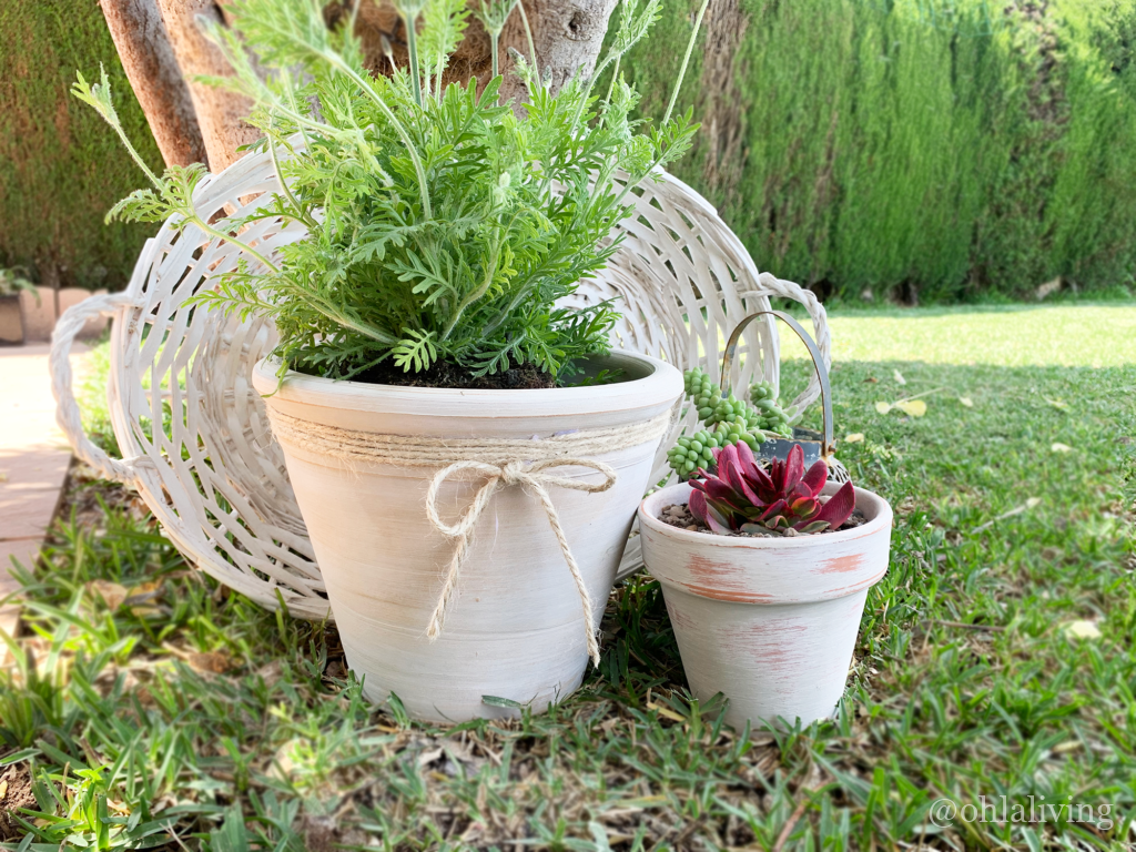 DIY Rustic Style Terracotta Pots