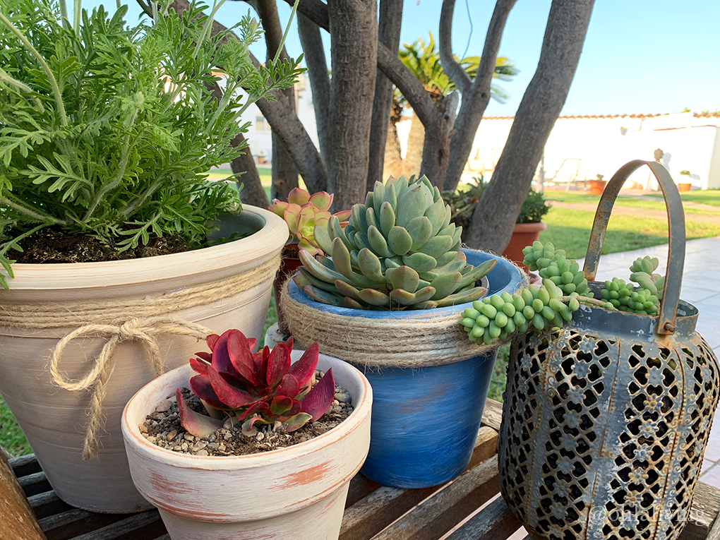 rustic aged terracotta pots